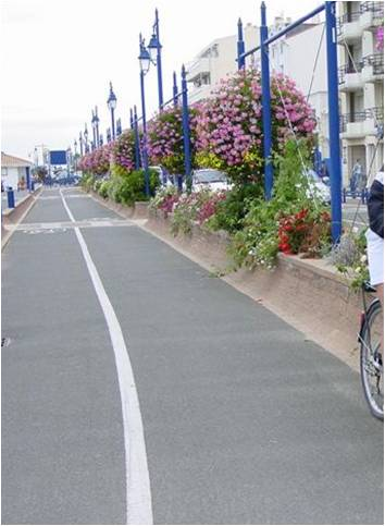 Piste Cyclable En Centre Ville